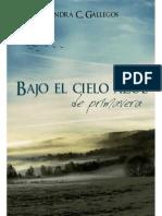 Bajo el cielo azul de primavera - Sandra Gallegos.pdf