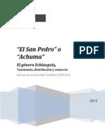 El San Pedro.