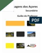 Professor Secundario