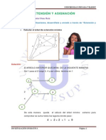 Extension y Asignacion (1)