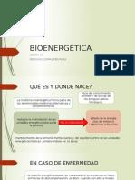 Bioenergética Expo