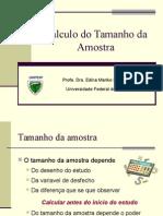 Calculo_Tamanho_da_amostra.ppt