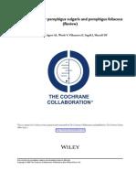 Meta Analisis Cochrane penfigo