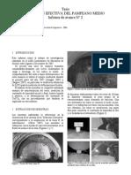Quaglia - Informe 2