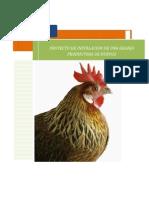 242017876-PROYECTO-DE-GALLINAS-docx.pdf