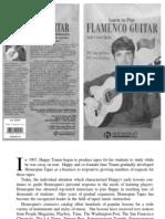 Aaron.gilmartin Learn.to.Play.flamenco.guitar