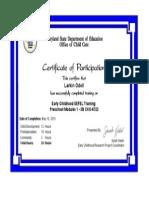 UMD CSEFEL Certificate