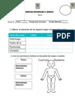 evaluación unidad 1 cs naturales.docx