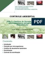 Cinética de Decaimento de organismos patogenicos e eutrofizacao