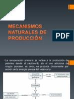 Mecanismos Naturales de Producción
