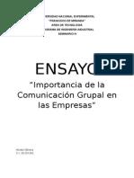 Ensayo ICGE
