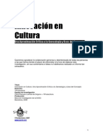 Innovacion en Cultura