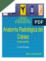 Craneo Huesos Craneales (3)