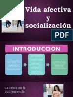 Vida Afectiva y Socialización