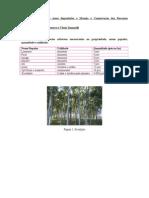 Recuperação de Áreas Degradadas e Manejo e Conservação Dos Recursos Floristicos