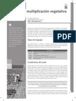 1. multiplicacion vegetativa por estacas INTA.pdf