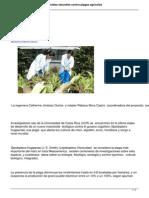 Cientificos Desarrollan Insecticidas Naturales Contra Plagas Agricolas