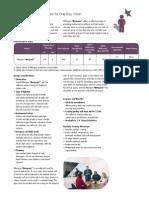 Pilkington_Mirropane_Datasheet.pdf