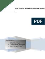 informe principios ultimo.docx
