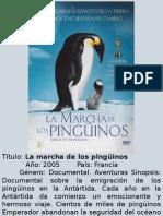 Catalogo - Documental