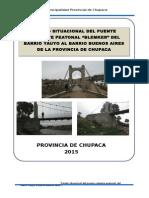 Informe Puente BLEMKER