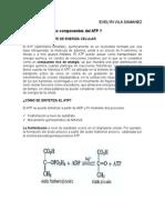 ATP.doc