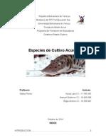Especies de Cultivo Acuícola