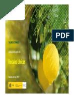 Analisis Del Sector de Frutales Citricos