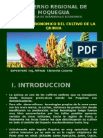 GOBIERNO REGIONAL DE MOQUEGUA.pptx