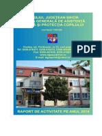 Raport Activitate Dgaspcbh 2014