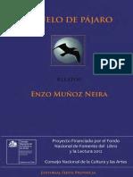 A Vuelo de Pajaro-ediciondigital Serindigena