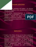 5. Toxoplasmosis - Mc. José Barletta Villarán