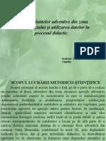 PLANTE ADVENTIVE DIN VALEA STANCIULU2.pptx