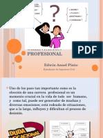 Orientacion Profesional Edwin Anael Pinto