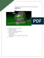 GENETICA MOLECULAR (1).docx