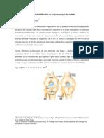 Tema Artroscopia de Rodilla