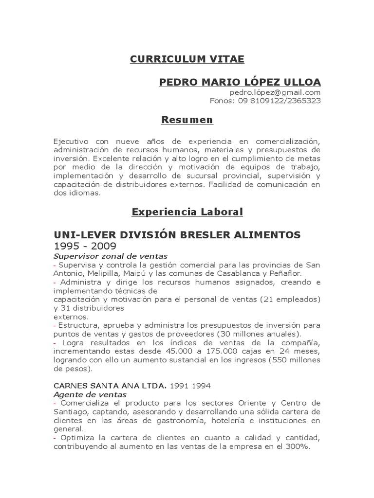 Perfecto Curriculum Vitae Para El Trabajo De Comercialización En La ...