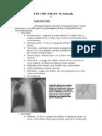 Note de Curs Torace 3 -Dr.naftanaila