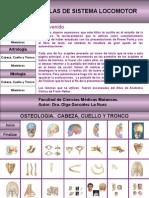Presentación Anatomia