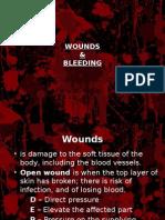 Elementary First Aid - Bleeding