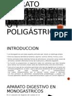 Aparato Digestivo en Monogástrico y Poligástrico