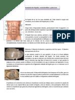 Clase 58 Anatomía de Hígado, Vesícula, Páncreas.