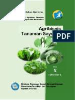 Agribisnis Tanaman Sayuran 1