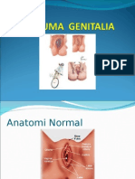 trauma-genitalia.ppt