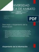 Platafromas de Alojamiento de Informacion (1)