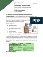 Sistema Endocrino - Generalidades.