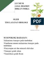 Mekanisme Transportasi Pada Tumbuhan
