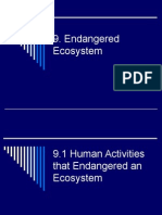 6632908 9 Endangered Ecosystem