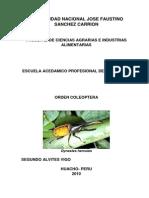 Orden Coleoptera (4)