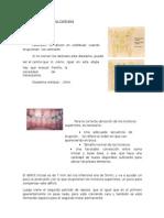 (551580471) Erupción-Dentaria-Parte-2.docx
